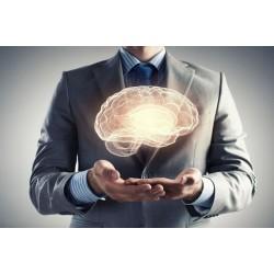 50 lenyűgöző tény az emberi agyról (a tudomány jelenlegi állása szerint)