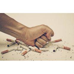 A cigid dobd el, ne az agyad!