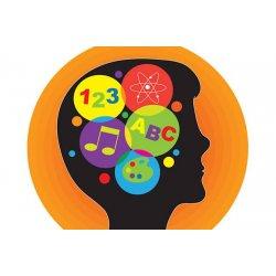Neked melyik a domináns intelligenciád a 9 közül?
