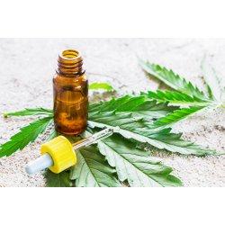 A marihuána gyógyító összetevője: a CBD olaj