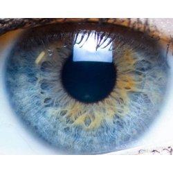 A vizuális és hang alapú memória felfedezése